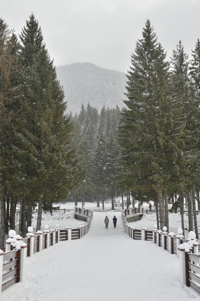 Poiana Braşov, între cele mai bune staţiuni de schi din Europa de Est / Foto: Mediafax