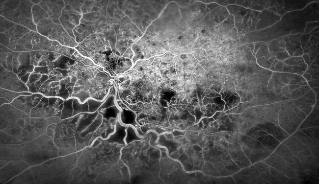 Ştiinţa văzută prin obiectivul microscopului