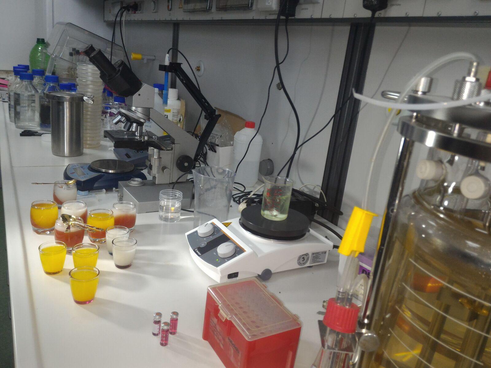 Golden Jelly, jeleul cu nanoparticule de aur inventat de cercetători de la Universitatea de Ştiinţe Agricole şi Medicină Veterinară (USAMV) Cluj-Napoca