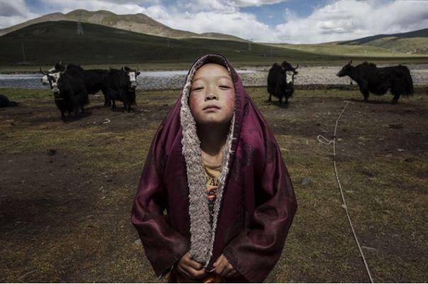 Cele mai bune fotografii ale Sony World Photography Awards 2016 -  GALERIE FOTO
