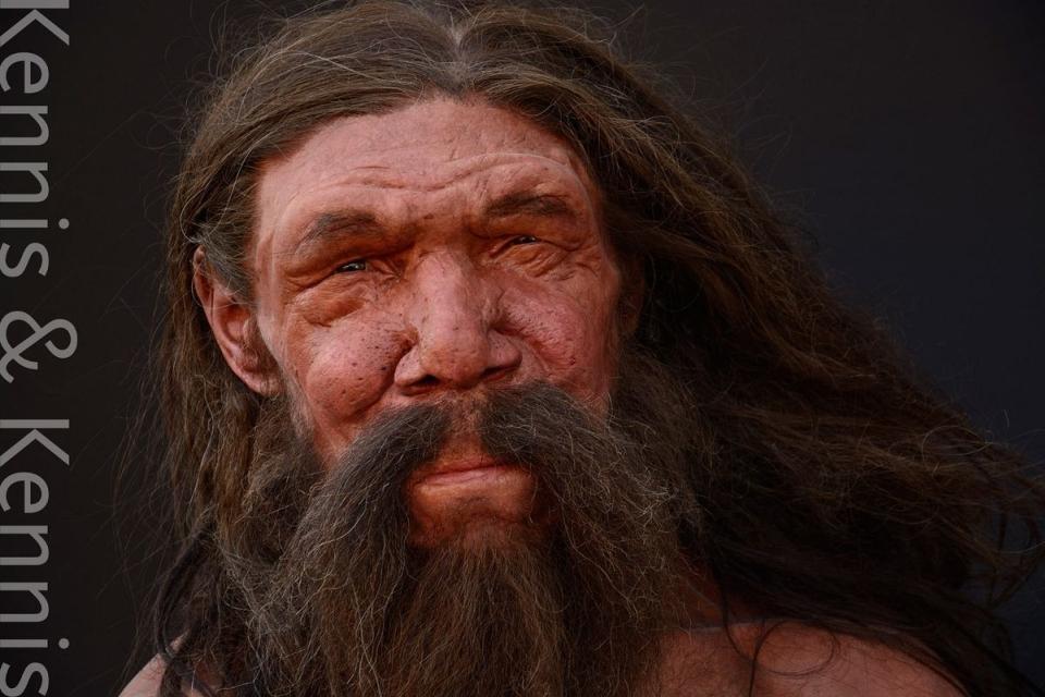 Omul Altamura este primul reprezentant hominid arhaic