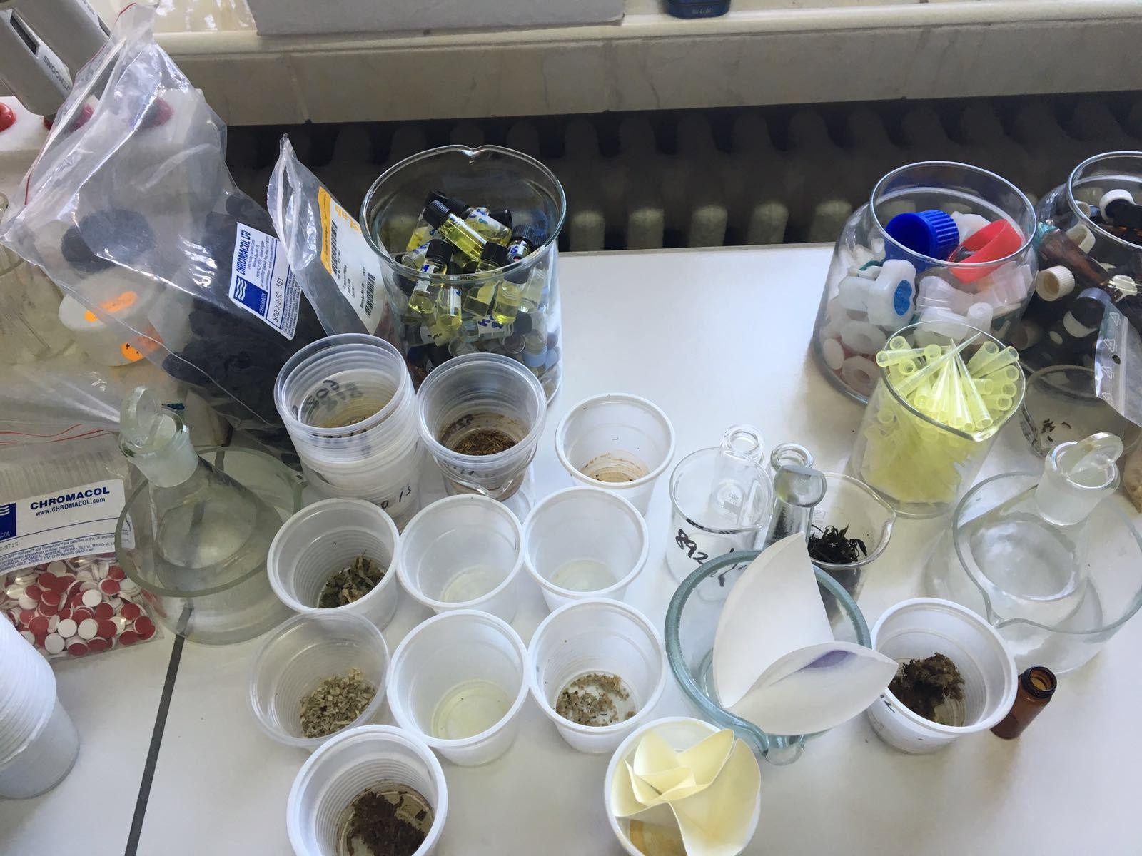 Laboratorul Poliţiei Române unde se testează drogurile / Credit foto: Mediafax