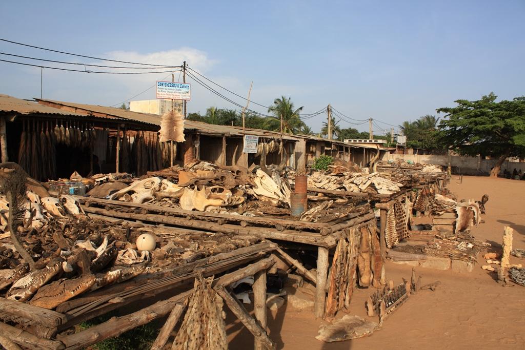 Akodessewa, piaţa de fetişuri voodoo este cea mai mare de acest fel din întreaga lume