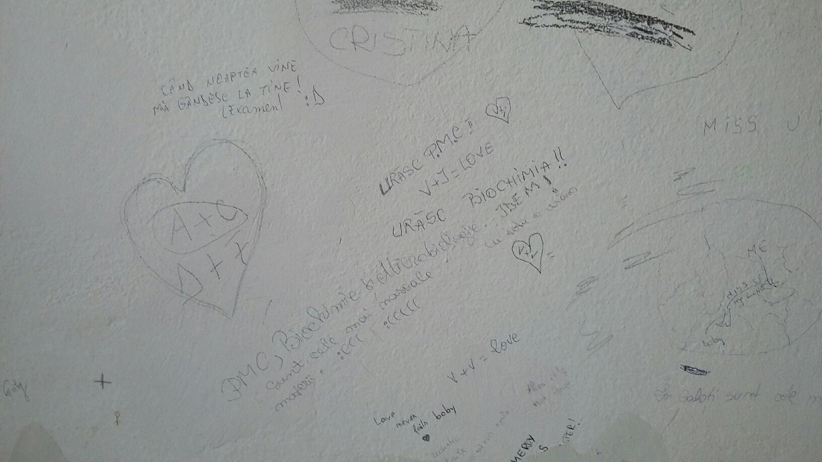 Studenţii din Galaţi au umplut cu desene şi mesaje pereţii căminelor din campusul universitar
