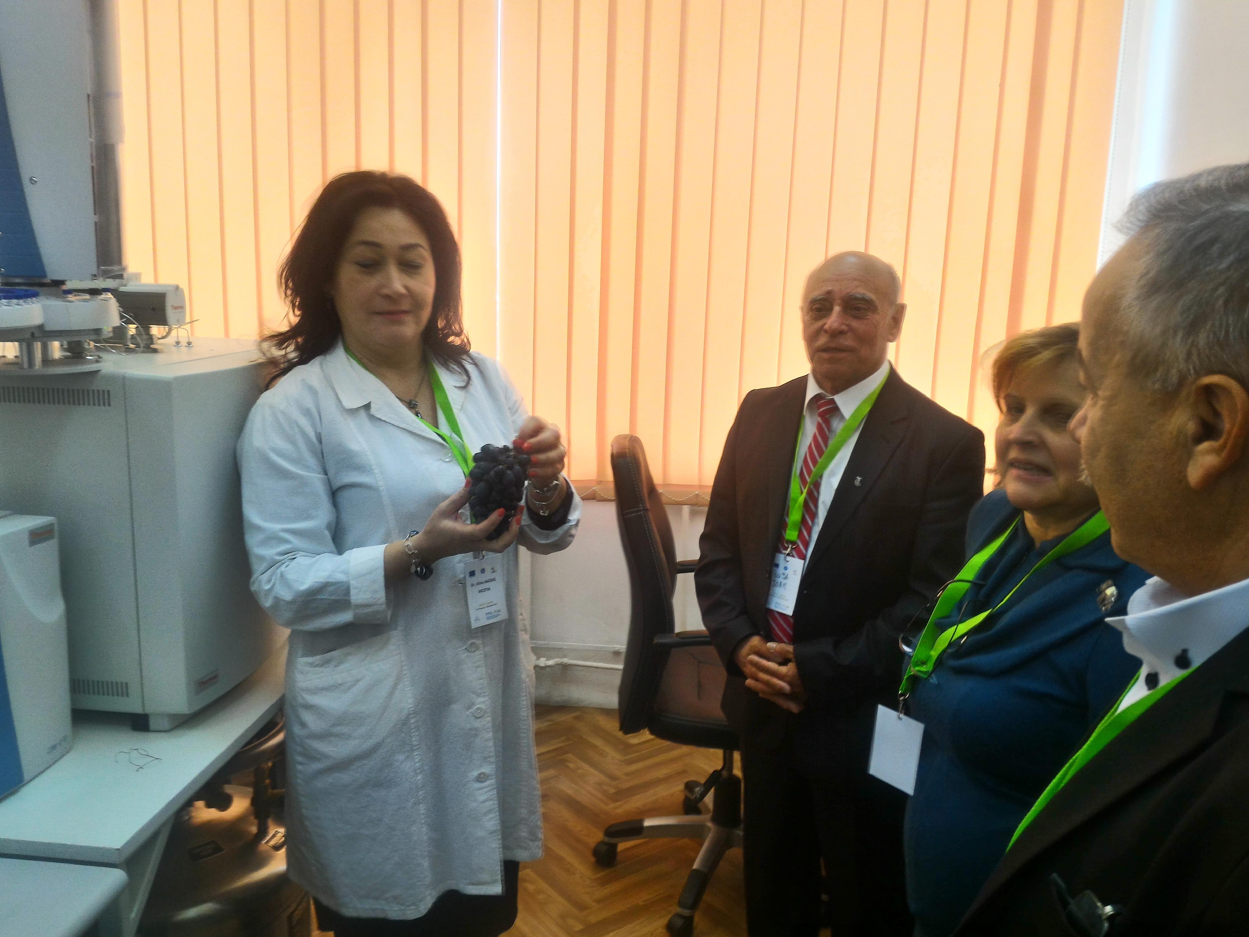 Proiectul cercetătorilor români pentru amprentarea izotopică a vinului