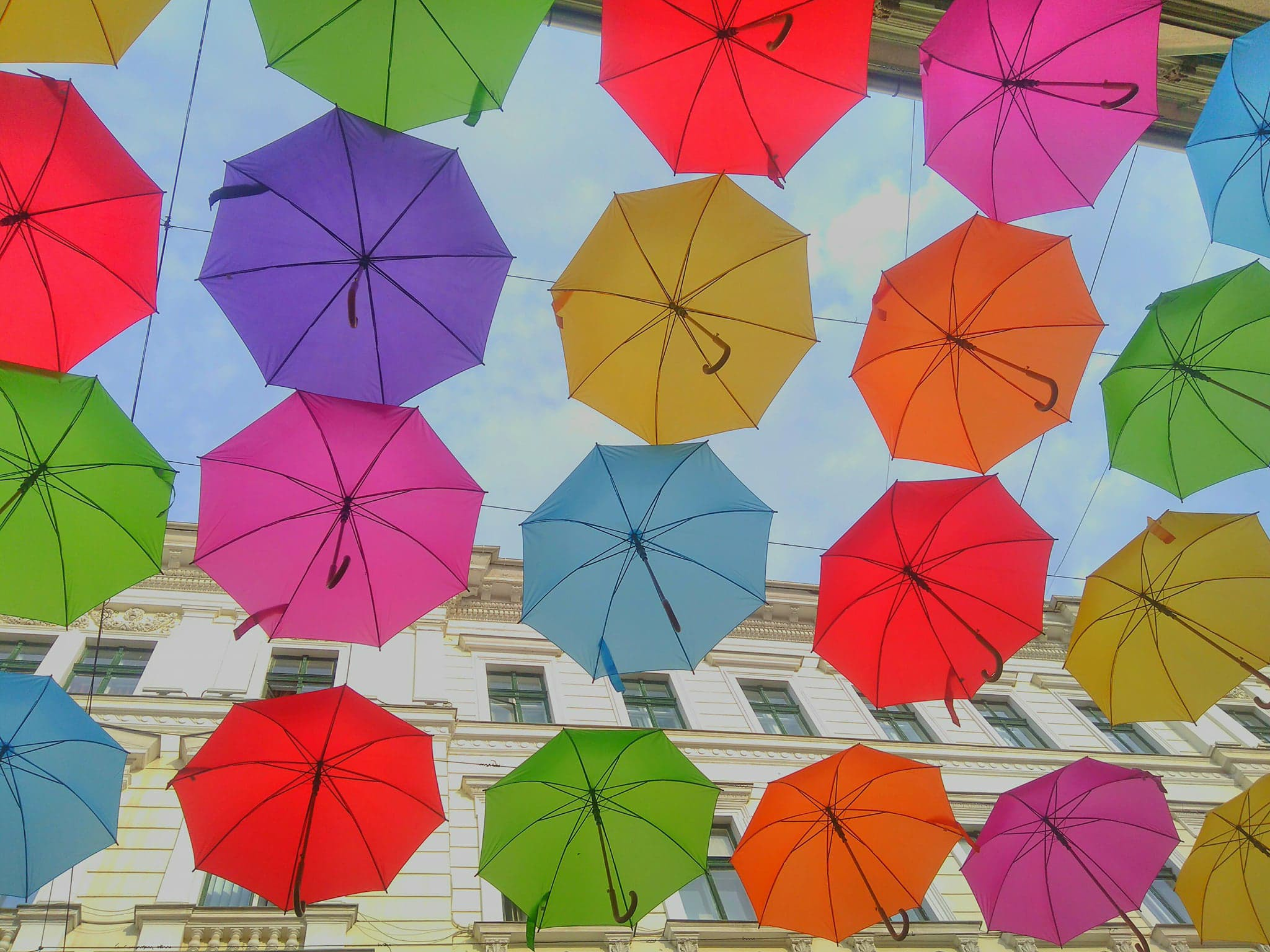 Umbrele în culori vii în centrul Timişoarei