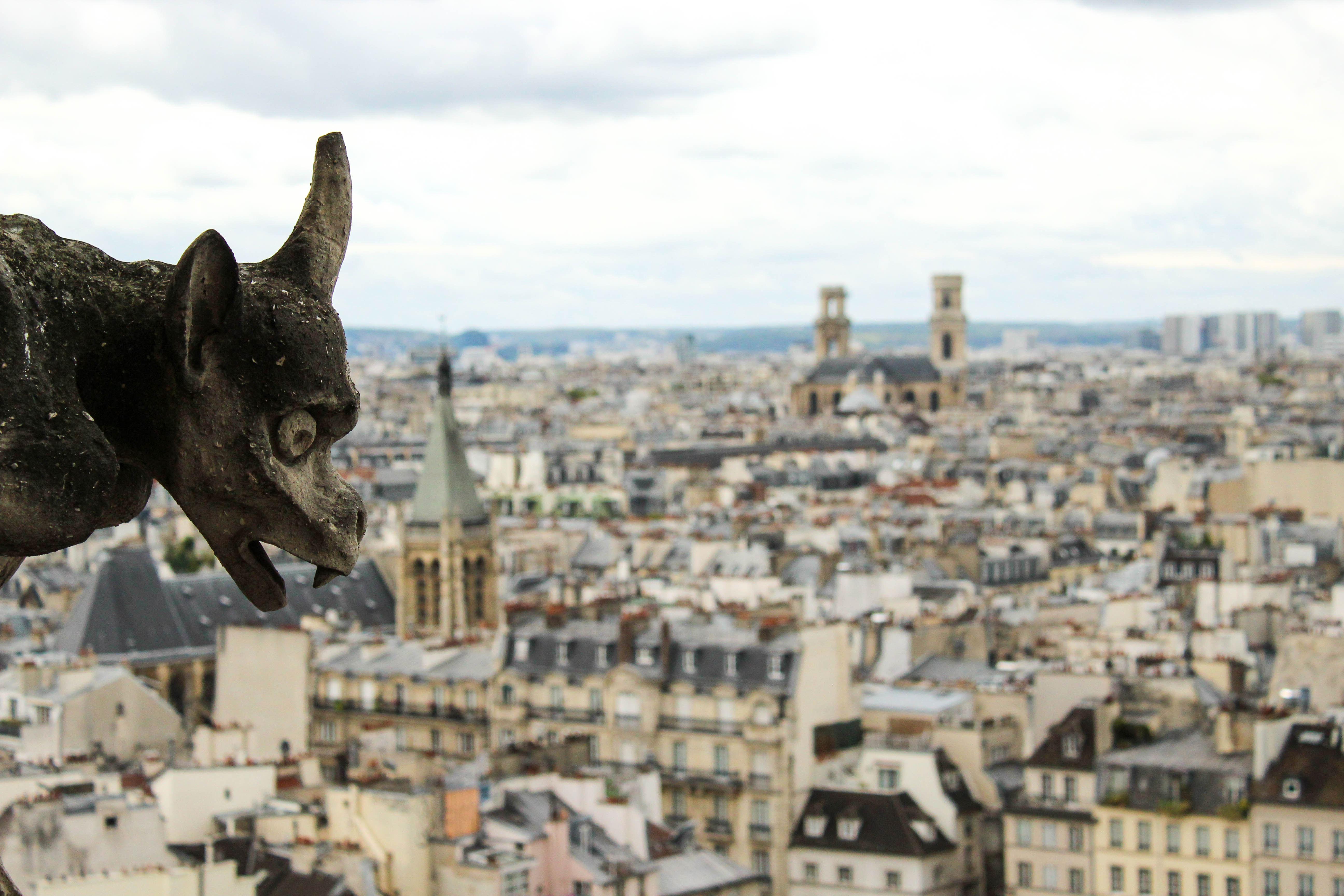 Garguii de la Notre Dame din Paris